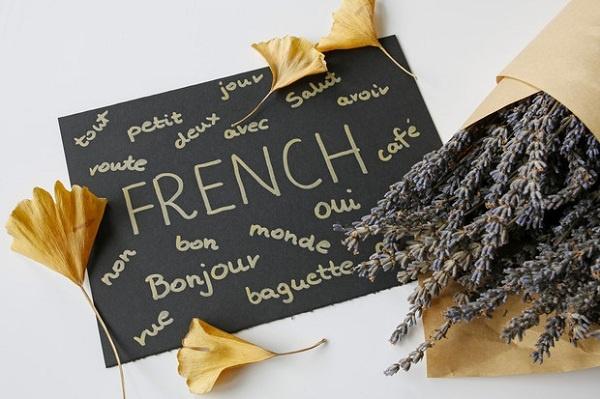бесплатные уроки французского языка
